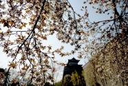 """中国城市的""""幸福启示录"""""""