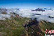 祁连山国家公园青海片区多种措施巩固重要生态安全屏障