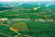 地膜厚了 污染少了 农民乐了