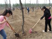 用行动点染绿色中国