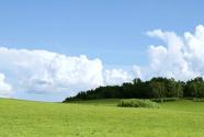 河北:草原综合植被盖度达71.6% 生态环境恶化势头初步控制