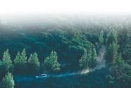 荒山绿 河水清 百姓富