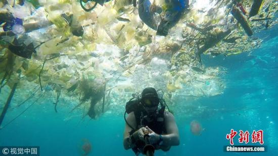 资料图:海洋中漂浮着大量塑料垃圾:瓶子、袋子、杯子、桶、吸管等等,鱼类及其他海洋生物都避之而不及。 图片来源:视觉中国