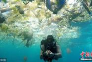 环保组织吁海洋垃圾所涉企业减塑 专家:须强制执行