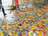 落叶也是秋色,何必强求扫尽