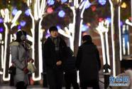 天津:冬夜民园