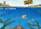 """长江十年禁渔为解""""无鱼""""之困"""