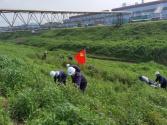 """抓實""""低碳生產""""和""""綠化建設"""" 方大九鋼打造生態鋼城惠民利企"""